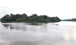 Река Пина - фото