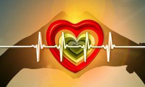 Сердце - фото