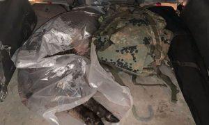 задержан за перевозку туши дикого кабана, фото УВД